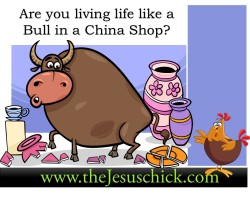 Are you living life like the Bull in the China Shop?