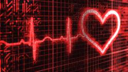 Heart Upgrade