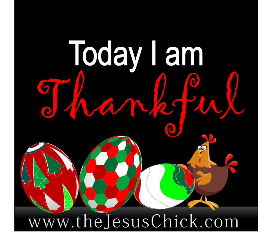 A Few Reasons in this Season to be Thankful