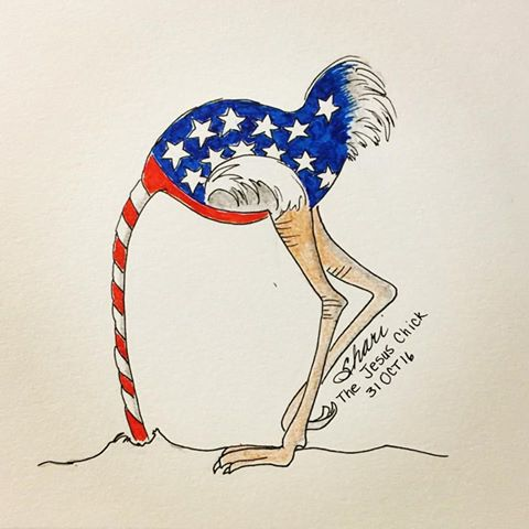 american-voter